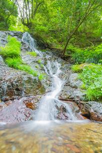 渓谷の滝の写真素材 [FYI00257055]
