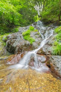 渓谷の滝の写真素材 [FYI00257057]