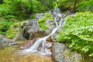 渓谷の滝の写真素材 [FYI00257058]