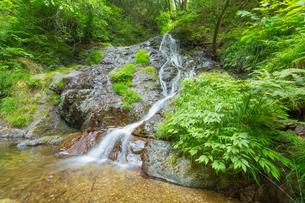 渓谷の滝の写真素材 [FYI00257059]
