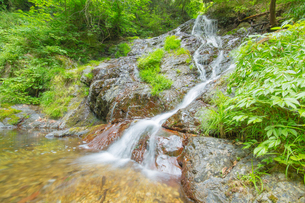 渓谷の滝の写真素材 [FYI00257060]