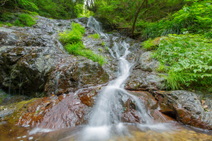 渓谷の滝の写真素材 [FYI00257064]