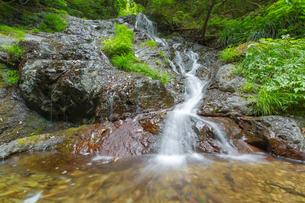 渓谷の滝の写真素材 [FYI00257065]