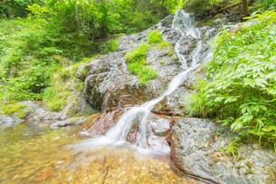 渓谷の滝の写真素材 [FYI00257069]