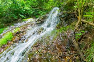 渓谷の滝の写真素材 [FYI00257072]