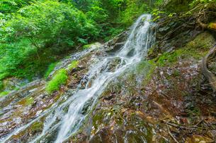 渓谷の滝の写真素材 [FYI00257073]
