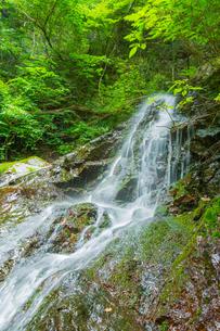 渓谷の滝の写真素材 [FYI00257103]
