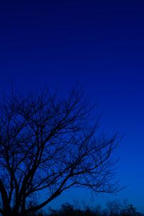 冬の始まりの写真素材 [FYI00257407]