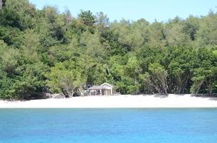 南の島の写真素材 [FYI00257504]