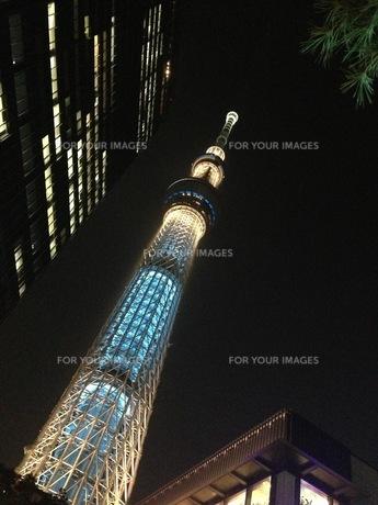 東京スカイツリーのある風景の写真素材 [FYI00257513]