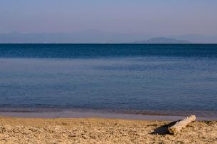 琵琶湖と湖岸の流木の素材 [FYI00258180]