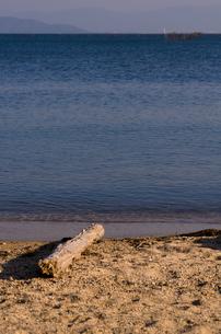 静かな琵琶湖の浜辺と流木の素材 [FYI00258210]