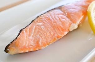 鮭の塩焼きの写真素材 [FYI00258467]