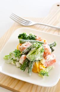 緑黄色野菜のサラダの写真素材 [FYI00258543]
