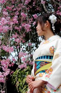 桜と着物姿の女性の写真素材 [FYI00259463]