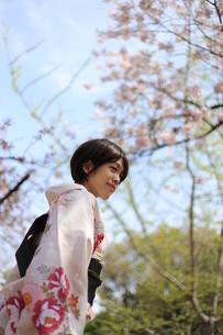 桜と着物姿の女性の写真素材 [FYI00259469]