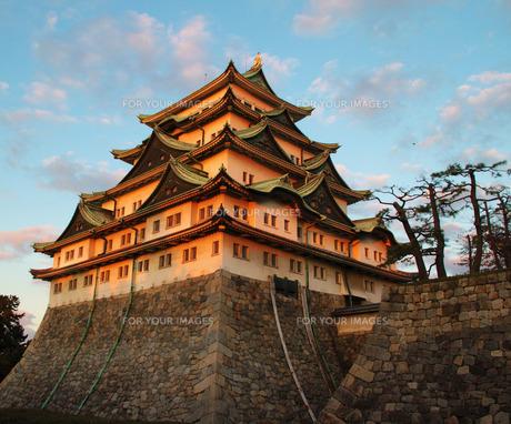 名古屋城の写真素材 [FYI00259709]