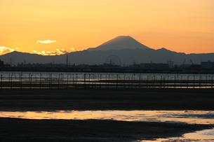 船橋三番瀬から見た夕暮れの富士山の写真素材 [FYI00259798]