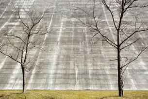 そびえ立つ壁の写真素材 [FYI00259881]