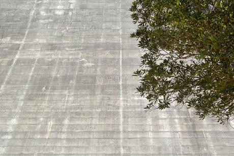 そびえ立つ壁の素材 [FYI00259914]