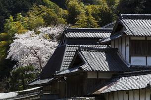 日本の風景の素材 [FYI00259926]