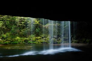 熊本県小国町 鍋ヶ滝の写真素材 [FYI00260044]