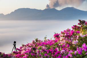 阿蘇谷の雲海と満開のツツジとカメラの写真素材 [FYI00260097]