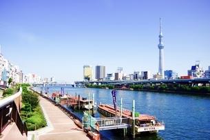 浅草の風景の写真素材 [FYI00260774]