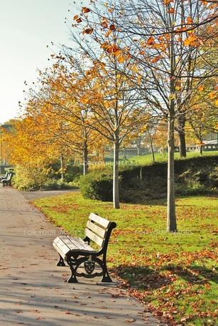 park in west yorkshire の写真素材 [FYI00260976]
