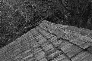 A Roofの写真素材 [FYI00260994]