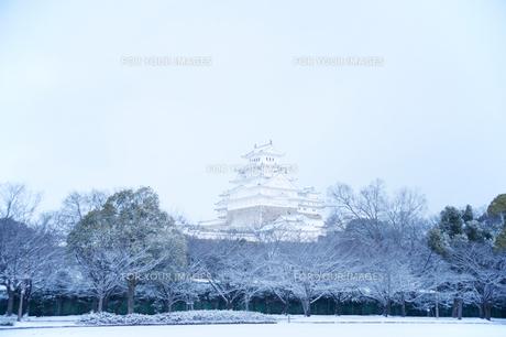 姫路城雪景色の写真素材 [FYI00261072]
