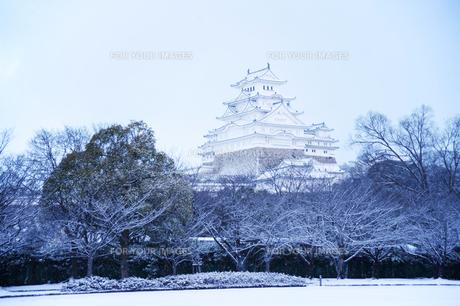 姫路城雪景色の写真素材 [FYI00261080]