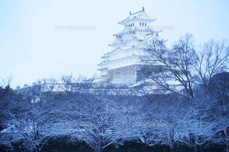 姫路城雪景色の写真素材 [FYI00261092]