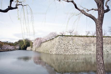姫路城の堀の写真素材 [FYI00261098]