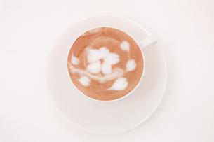 桜の花のラテアートの写真素材 [FYI00261166]