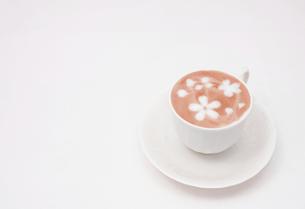 桜が舞う和風ラテアートの写真素材 [FYI00261174]