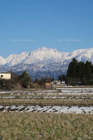 初春の剣岳の写真素材 [FYI00261314]