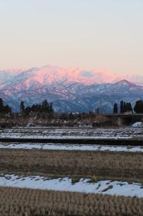 夕焼けに染まる立山連邦の写真素材 [FYI00261315]