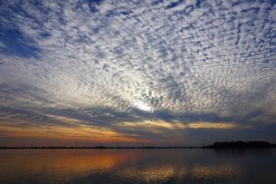 牛久沼の夕景の写真素材 [FYI00261523]