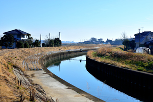 霞ヶ浦の高橋川の写真素材 [FYI00261525]