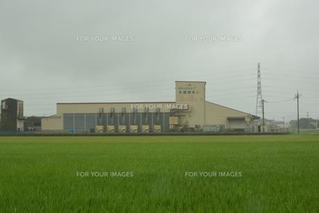なめがた農協潮来地区ライスセンター の写真素材 [FYI00261527]
