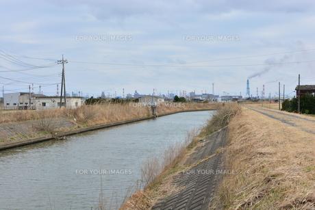 霞ヶ浦の掘割川の写真素材 [FYI00261542]