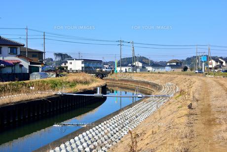 霞ヶ浦の高橋川の写真素材 [FYI00261545]