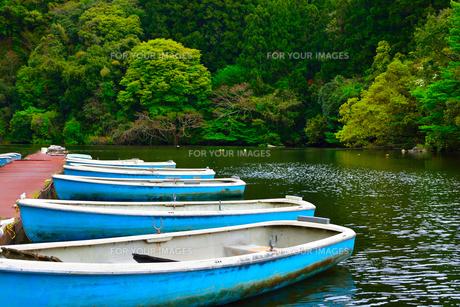 豊英ダムのボート乗り場の写真素材 [FYI00261546]