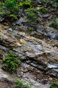 岩盤のテクスチャの写真素材 [FYI00261553]