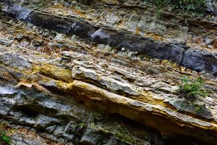 岩盤のテクスチャの写真素材 [FYI00261557]
