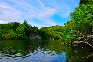 豊英ダムの自然の写真素材 [FYI00261573]