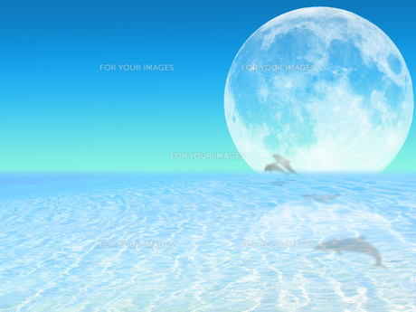 月と海とイルカの写真素材 [FYI00261817]