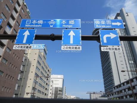 春日通りの道路標識の写真素材 [FYI00261893]