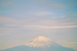 淡い色の富士山の写真素材 [FYI00262009]